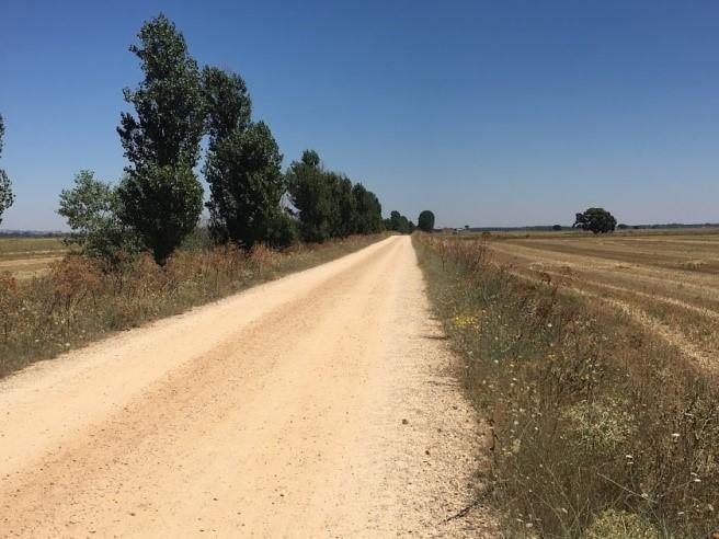 Una logopedista sul Cammino di Santiago